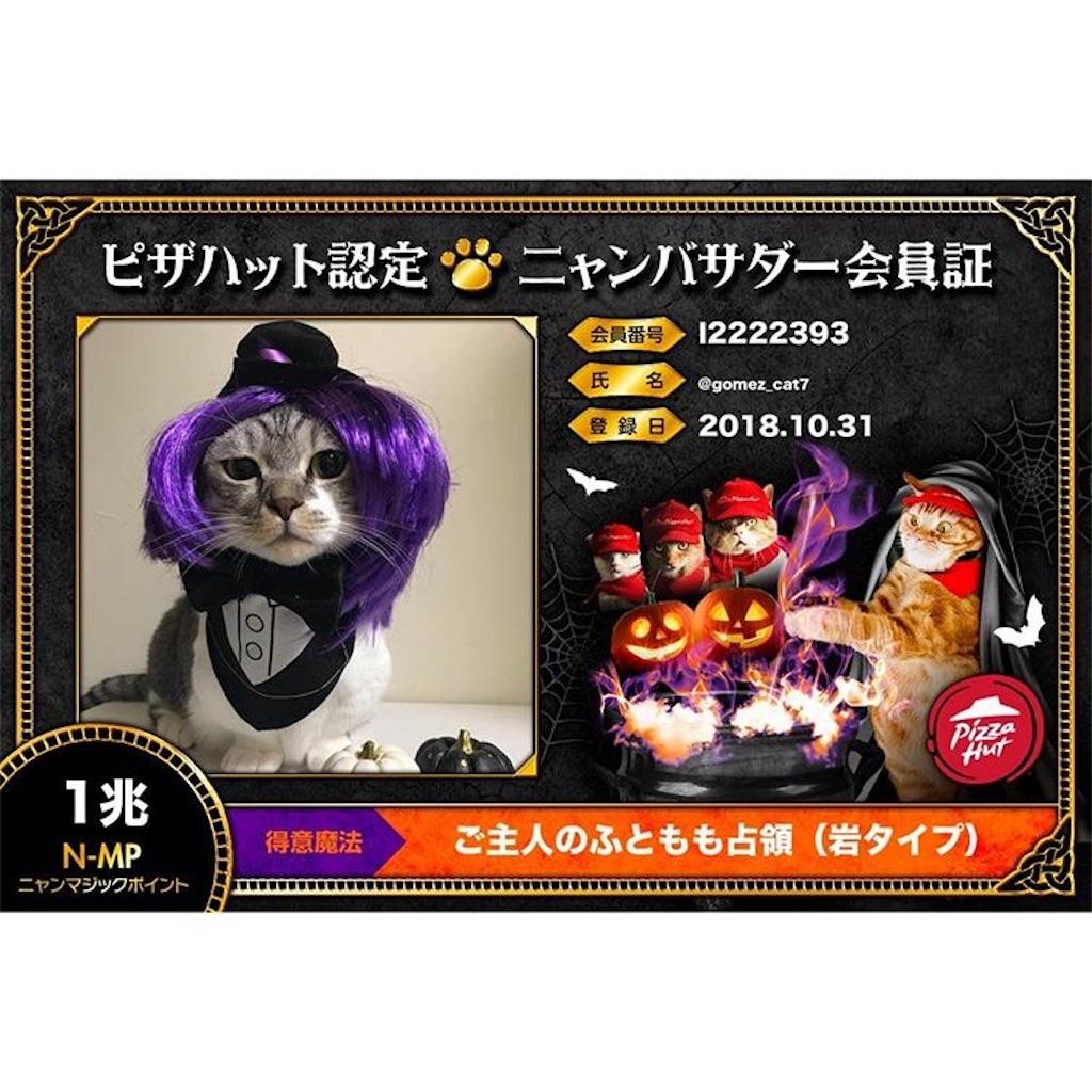 f:id:Gomez-cat:20181106010229j:plain