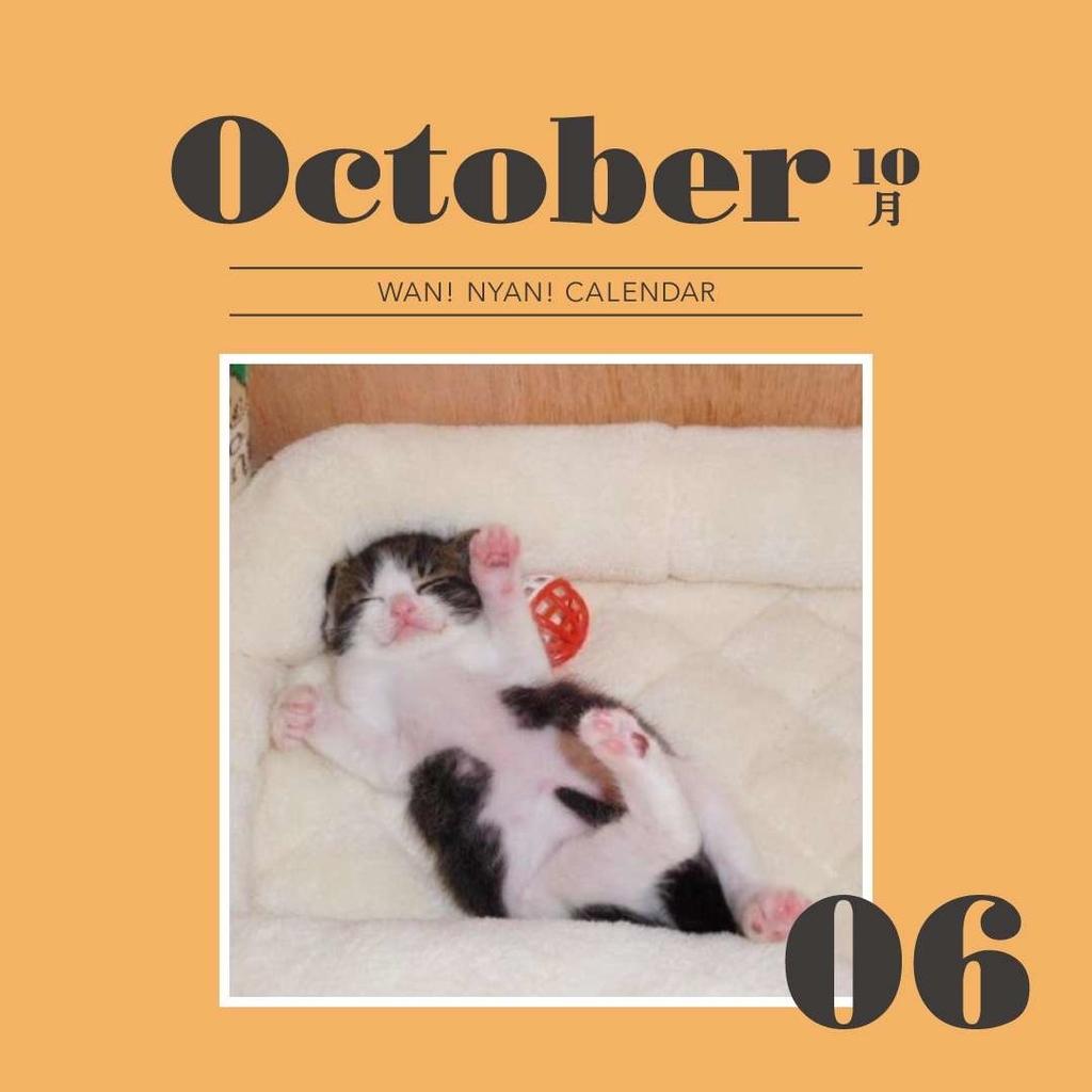 f:id:Gomez-cat:20181109115904j:plain
