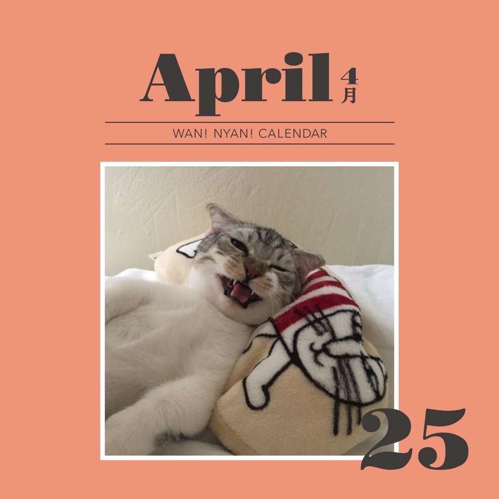 f:id:Gomez-cat:20181109115910j:plain