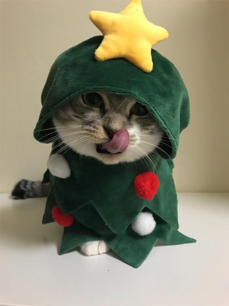 f:id:Gomez-cat:20181112220122j:image