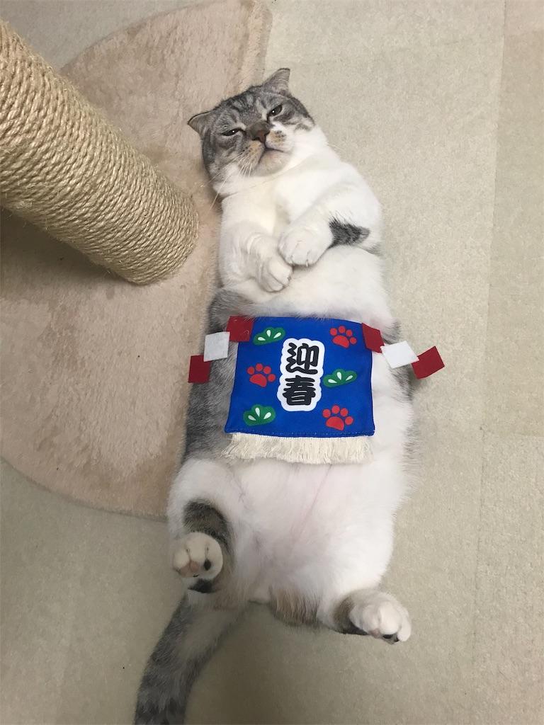 f:id:Gomez-cat:20181203183701j:image