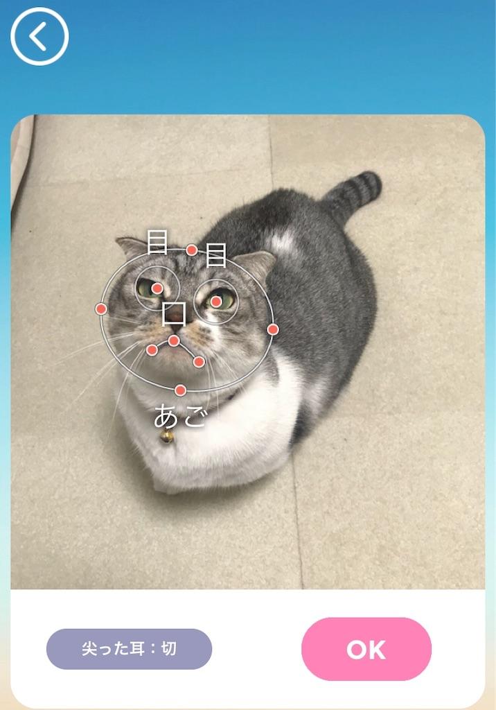 f:id:Gomez-cat:20181206220533j:image
