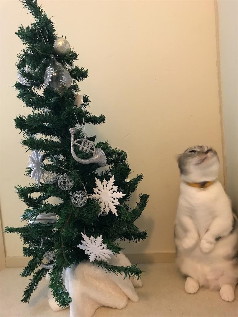f:id:Gomez-cat:20181208010122j:image
