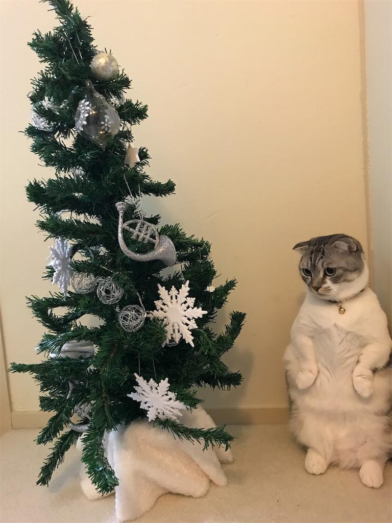 f:id:Gomez-cat:20181208010521j:image