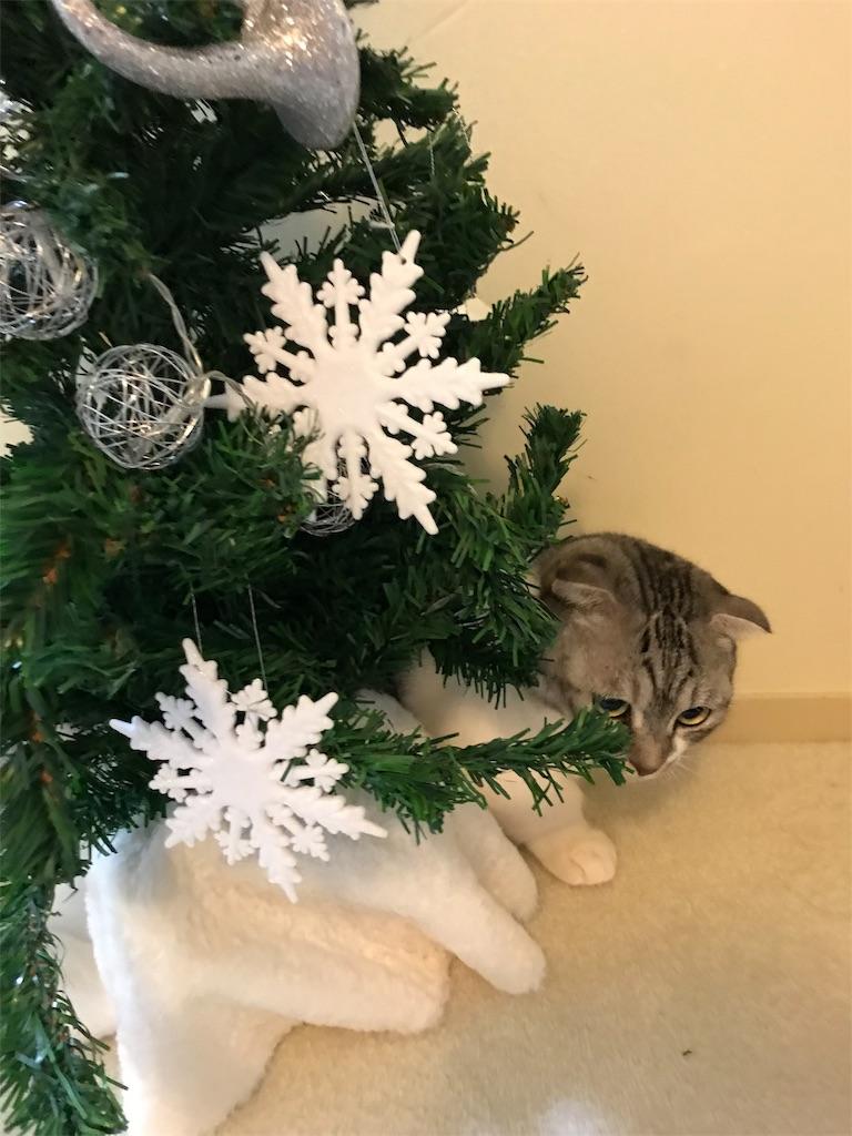 f:id:Gomez-cat:20181208012047j:image