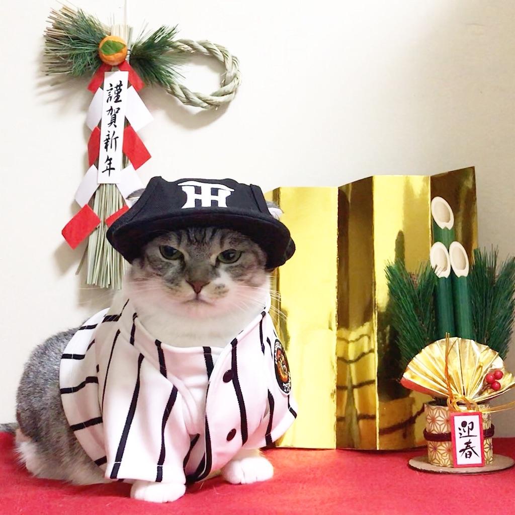 f:id:Gomez-cat:20200113100609j:image
