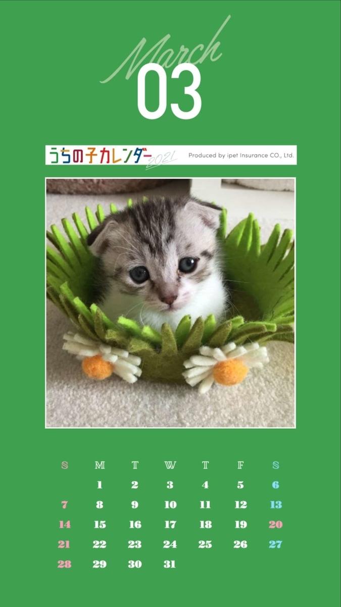 f:id:Gomez-cat:20200924093535j:plain