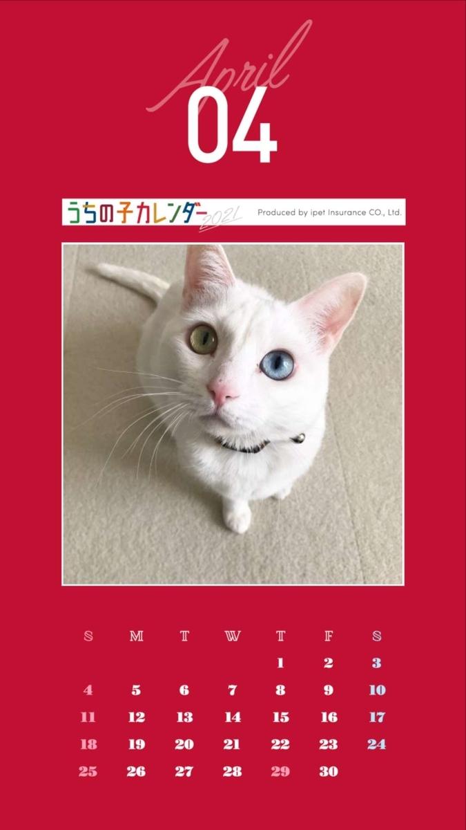 f:id:Gomez-cat:20200924093538j:plain