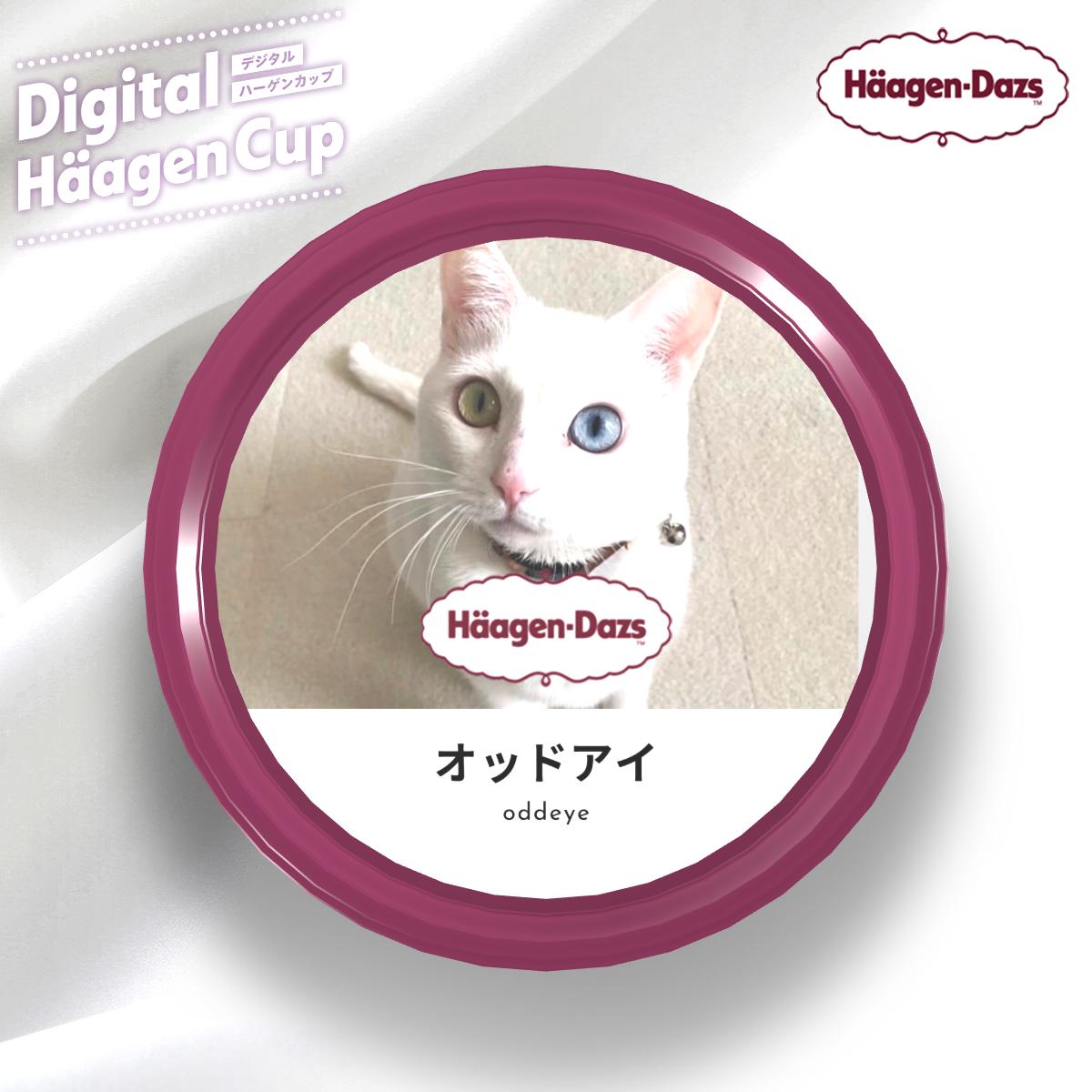 f:id:Gomez-cat:20201211185703p:plain