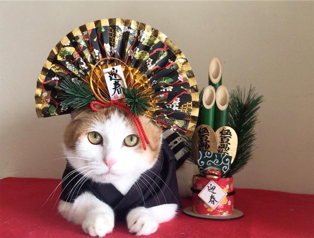 f:id:Gomez-cat:20210104151109j:image