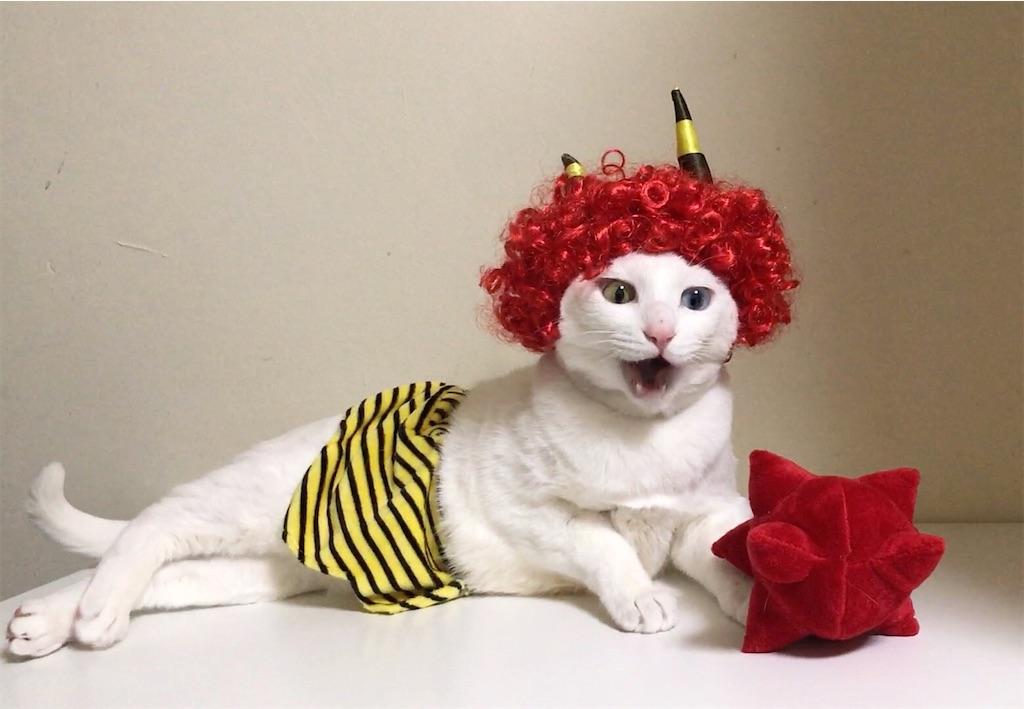 f:id:Gomez-cat:20210203143555j:image