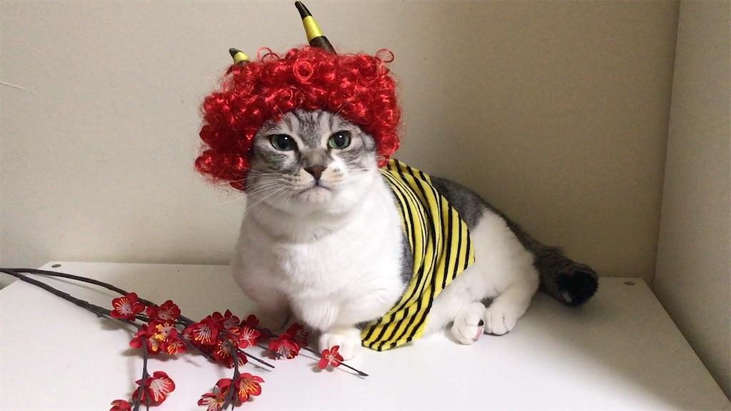 f:id:Gomez-cat:20210203143558j:image