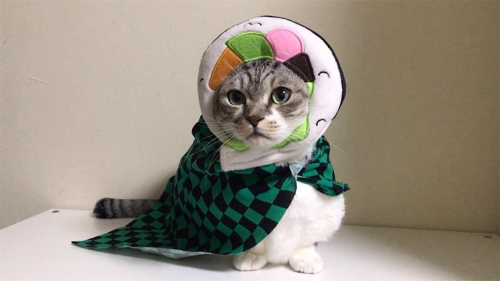 f:id:Gomez-cat:20210203143601j:image