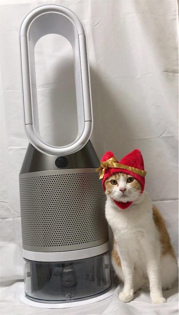 f:id:Gomez-cat:20210212002938j:image