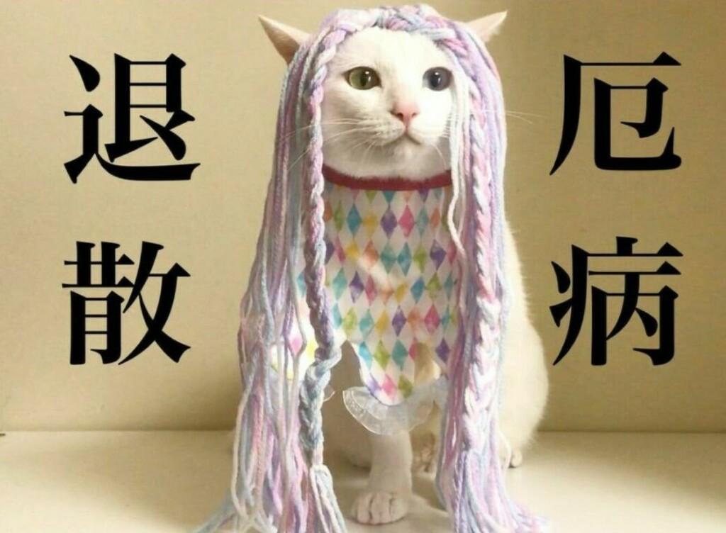 f:id:Gomez-cat:20210819135319j:plain