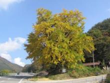 f:id:Gong-ji:20121028074000j:image