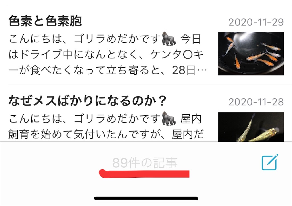f:id:GorillaMedaka:20201201233950j:plain