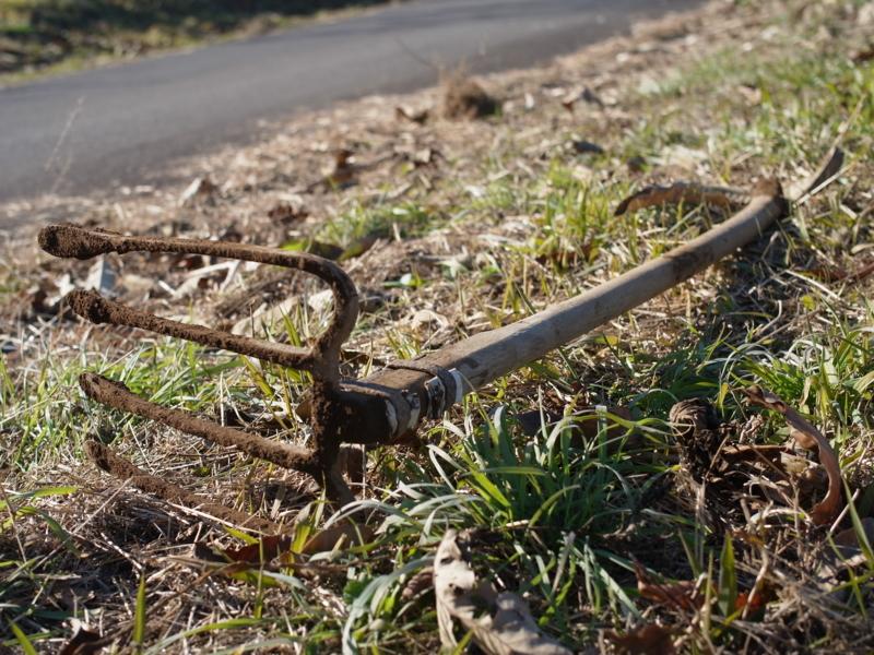 f:id:Greenweekends:20121209100920j:image:w640