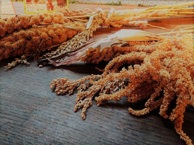 つぶつぶ 雑穀 伝統食