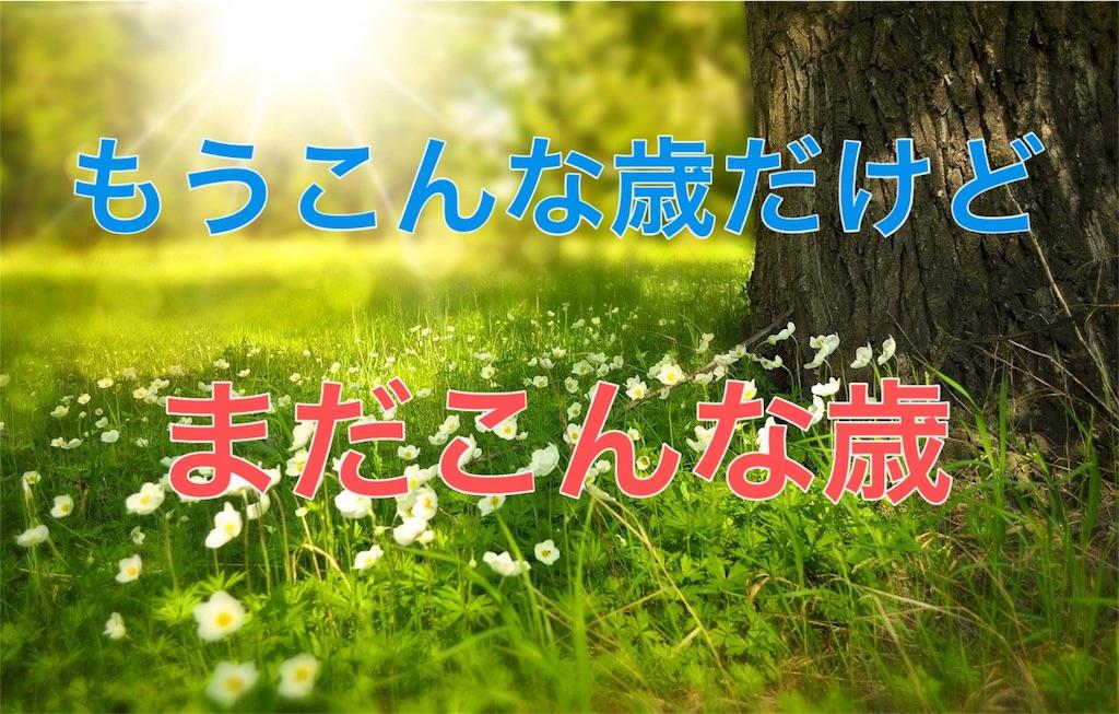 f:id:HELon:20200724182111j:image