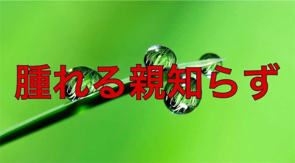 f:id:HELon:20200926235829j:image