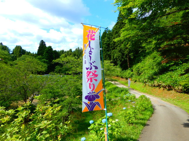 頼成の森 花菖蒲祭りのぼり旗