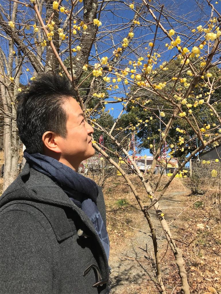 f:id:HIROAKI-ISHIWATA:20190202202910j:image