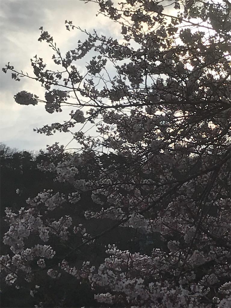 f:id:HIROAKI-ISHIWATA:20190402021318j:image