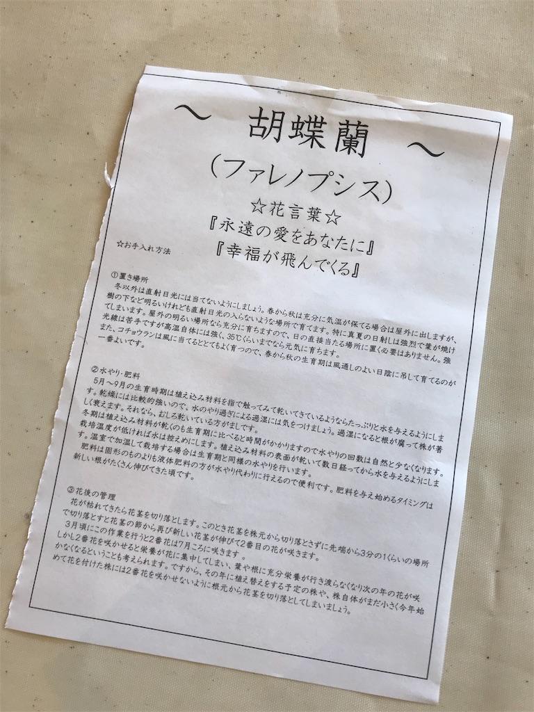 f:id:HIROAKI-ISHIWATA:20190406211934j:image