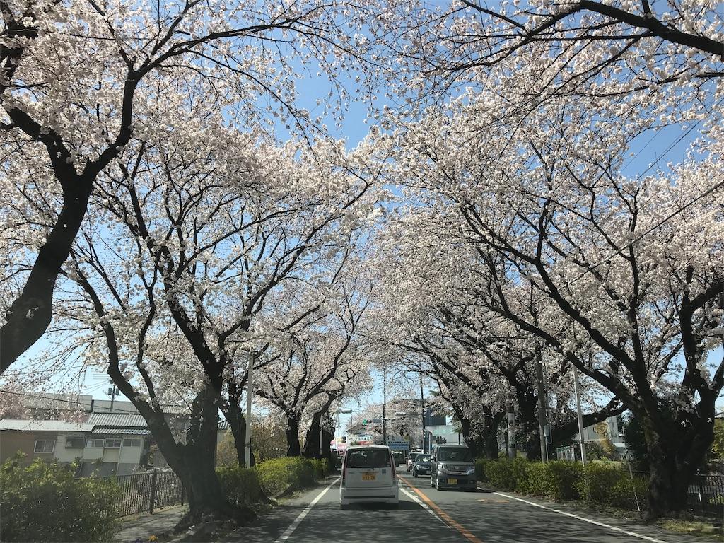 f:id:HIROAKI-ISHIWATA:20190406211958j:image