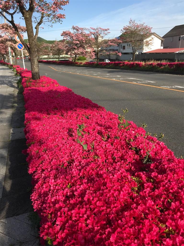 f:id:HIROAKI-ISHIWATA:20190428165341j:image