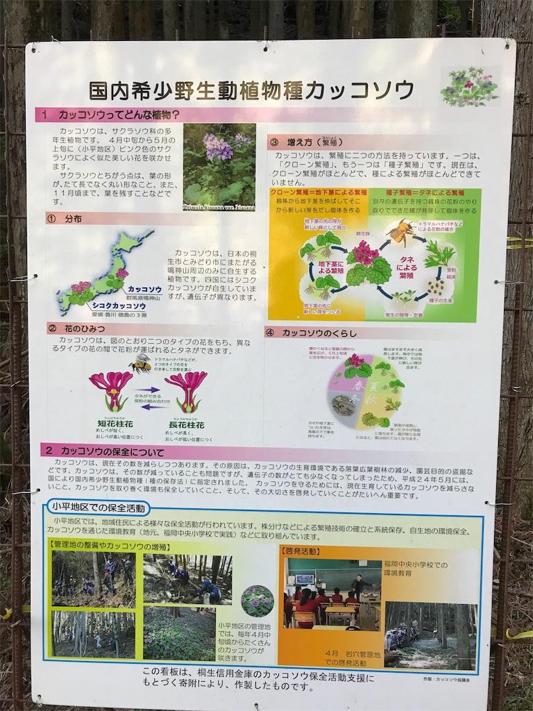 f:id:HIROAKI-ISHIWATA:20190502195310j:image
