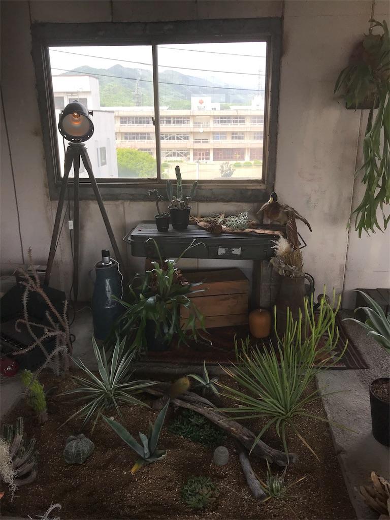 f:id:HIROAKI-ISHIWATA:20190503160043j:image