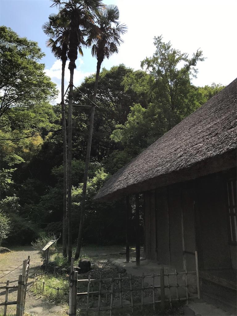 f:id:HIROAKI-ISHIWATA:20190519212522j:image