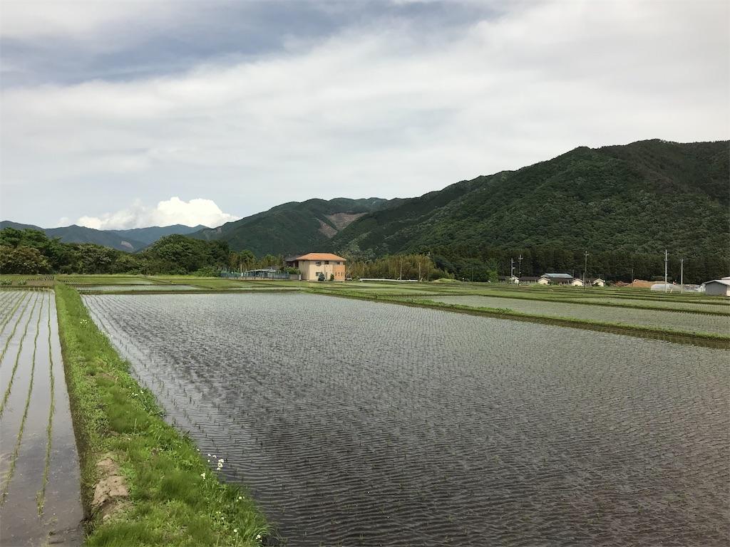 f:id:HIROAKI-ISHIWATA:20190530041120j:image