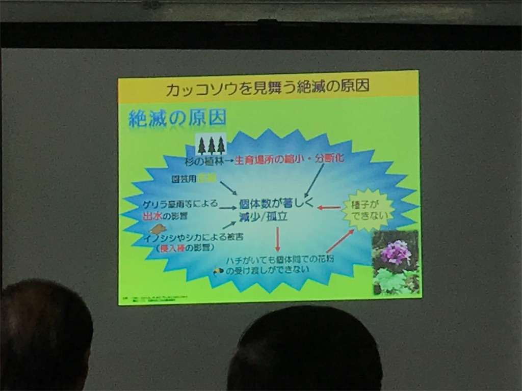 f:id:HIROAKI-ISHIWATA:20190615225002j:image