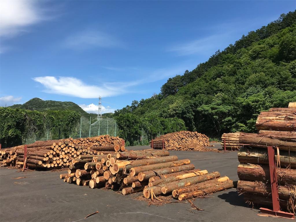 f:id:HIROAKI-ISHIWATA:20190617163028j:image