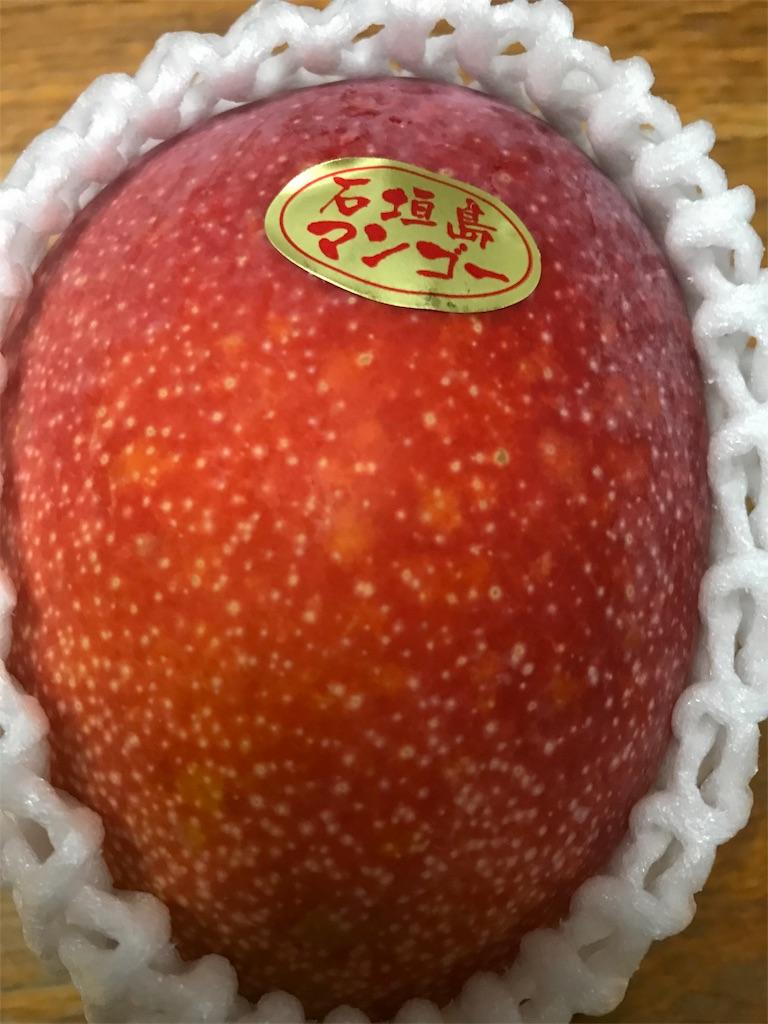 f:id:HIROAKI-ISHIWATA:20190721112033j:image