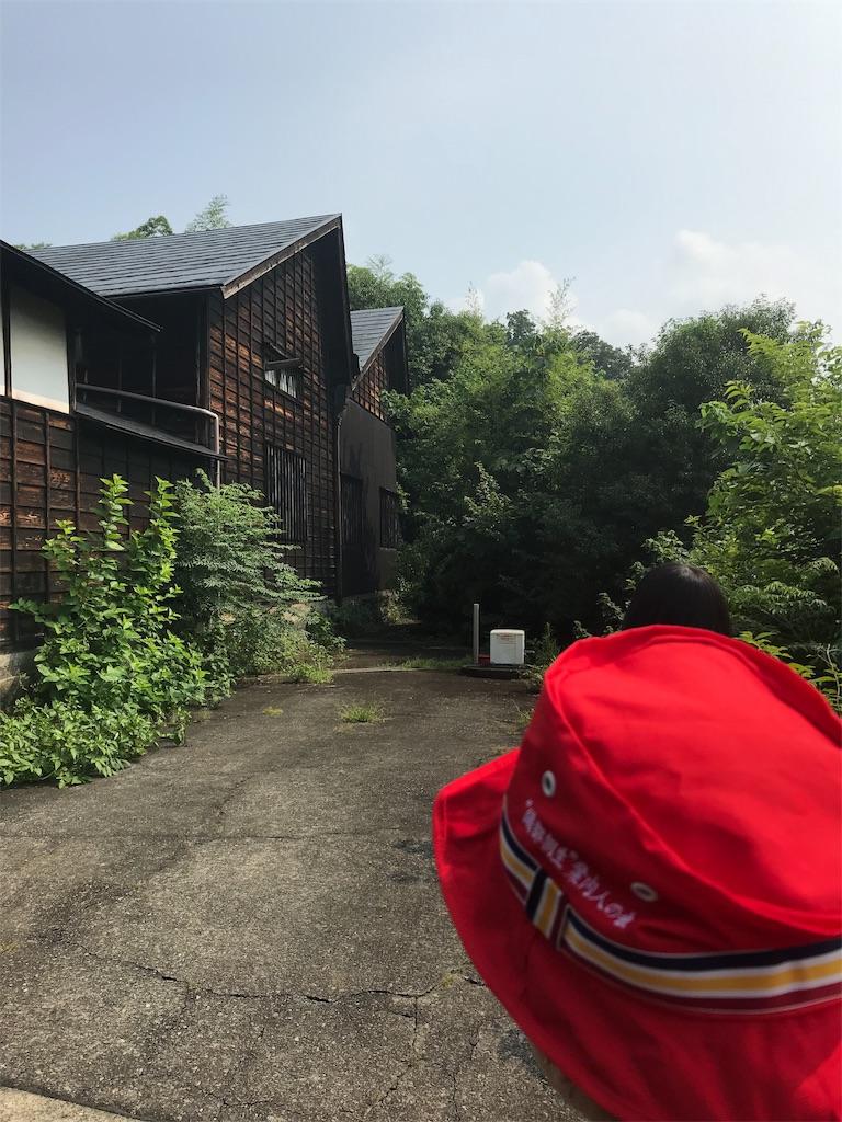 f:id:HIROAKI-ISHIWATA:20190803130431j:image