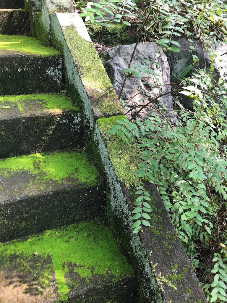 f:id:HIROAKI-ISHIWATA:20190803131925j:image