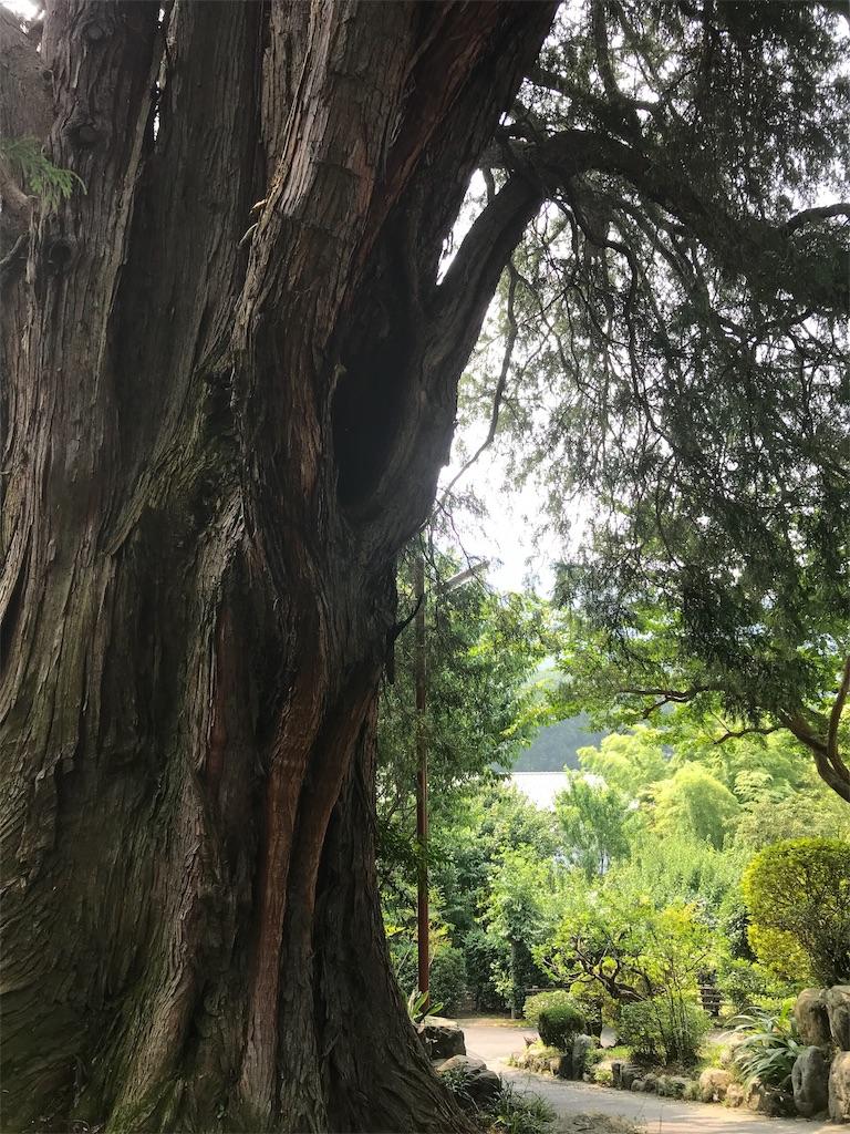 f:id:HIROAKI-ISHIWATA:20190803133145j:image