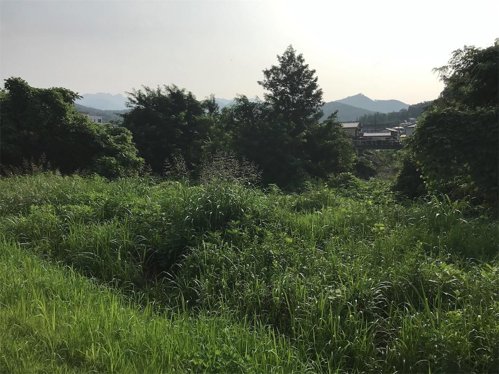 f:id:HIROAKI-ISHIWATA:20190804091651j:image