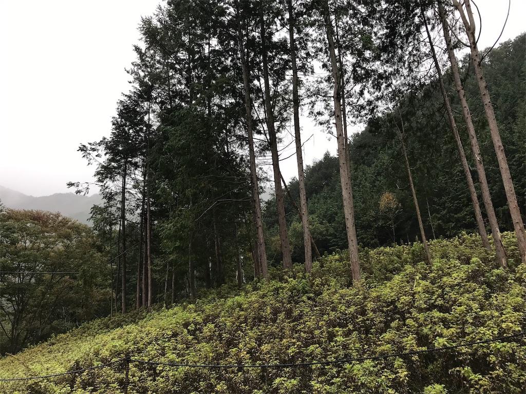 f:id:HIROAKI-ISHIWATA:20191024220830j:image