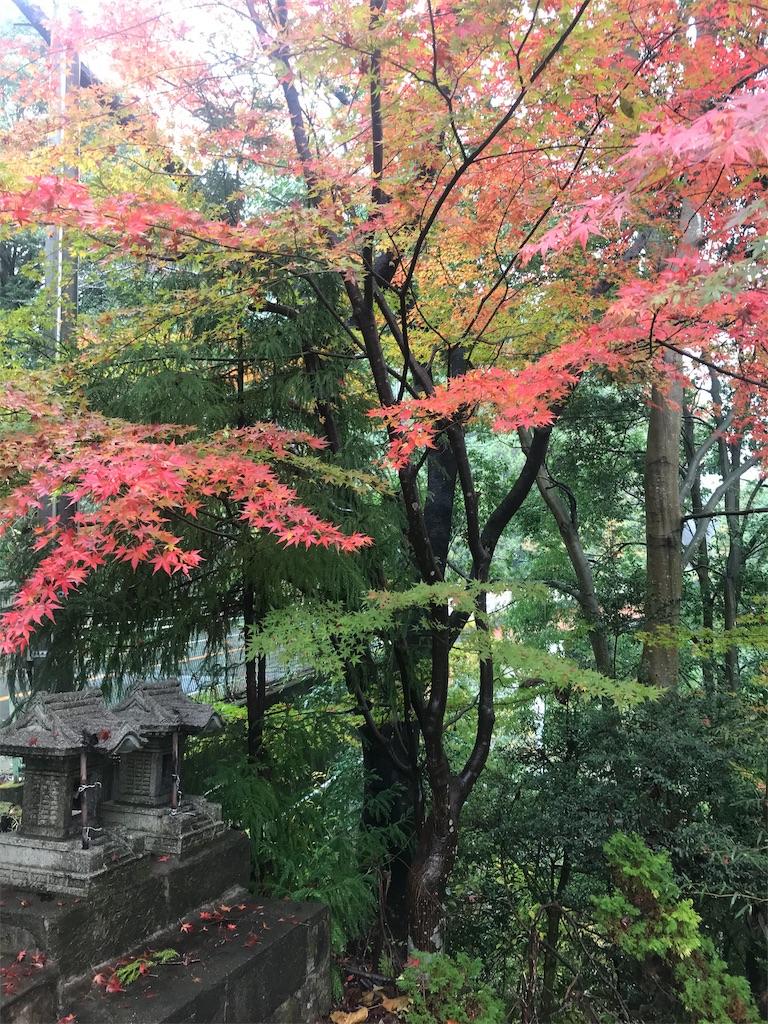 f:id:HIROAKI-ISHIWATA:20191124132315j:image