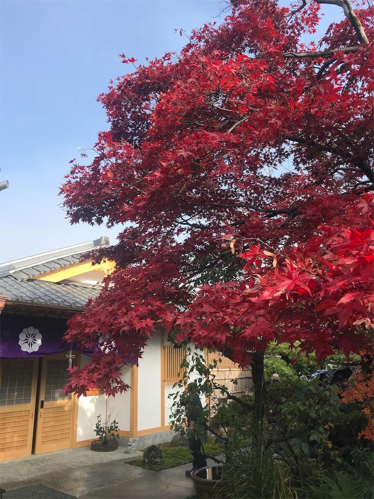 f:id:HIROAKI-ISHIWATA:20191124133422j:image