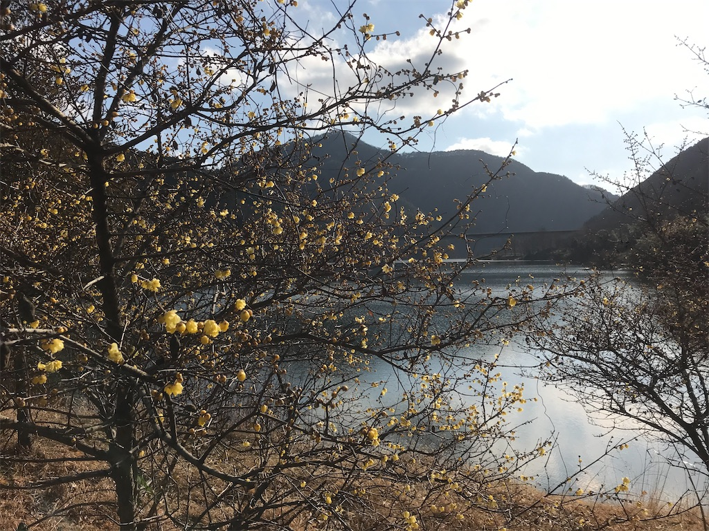f:id:HIROAKI-ISHIWATA:20200111171026j:image