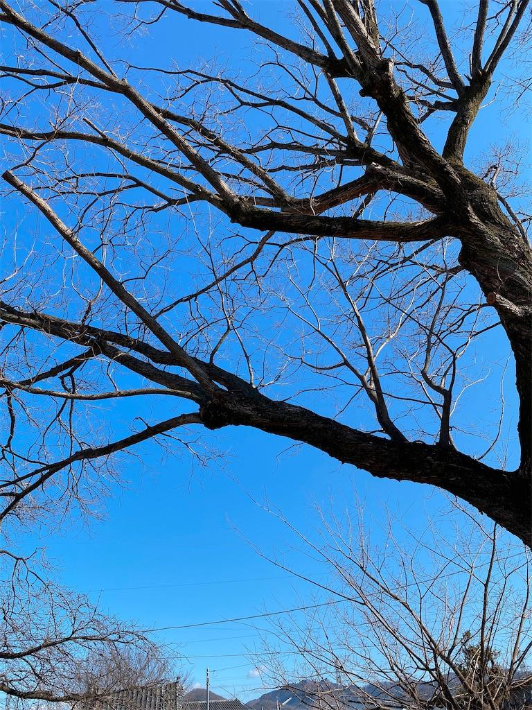 f:id:HIROAKI-ISHIWATA:20200120103238j:image