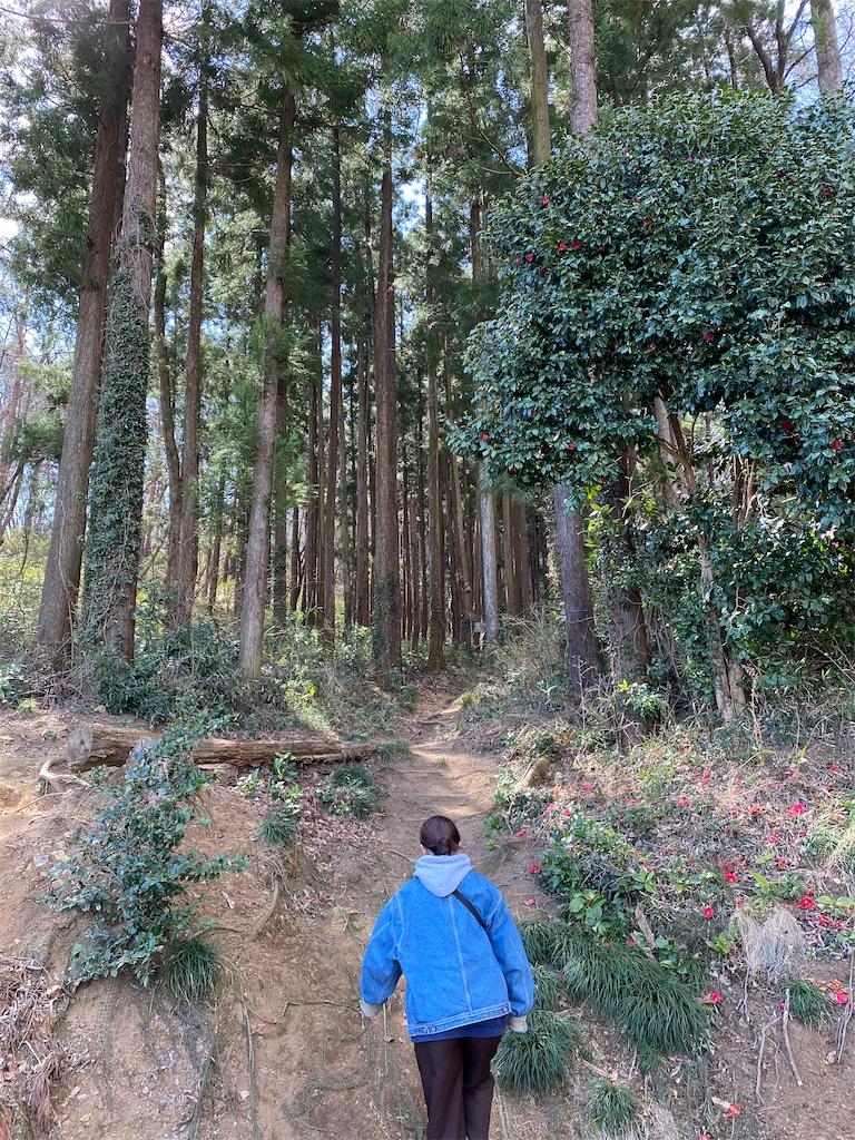 f:id:HIROAKI-ISHIWATA:20200320124323j:image