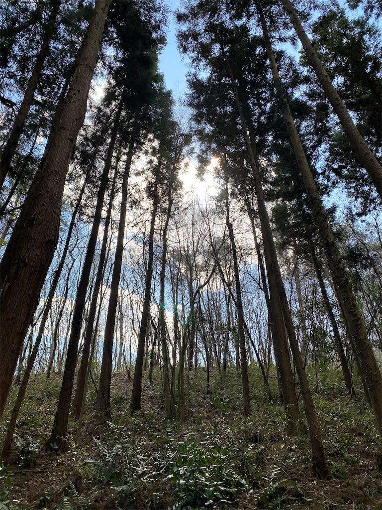 f:id:HIROAKI-ISHIWATA:20200320124331j:image