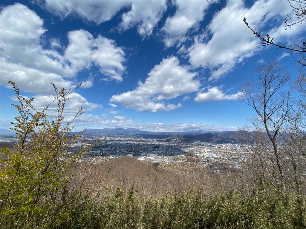 f:id:HIROAKI-ISHIWATA:20200320124337j:image